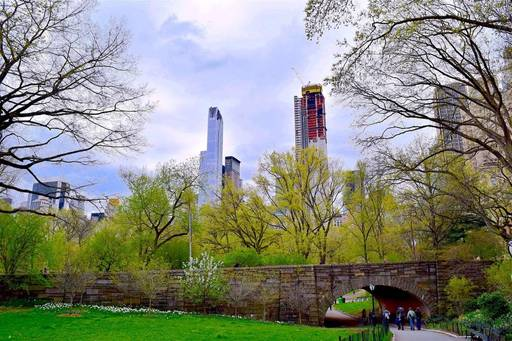 view of central park south