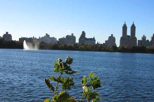 the-reservoir-centralpark-2