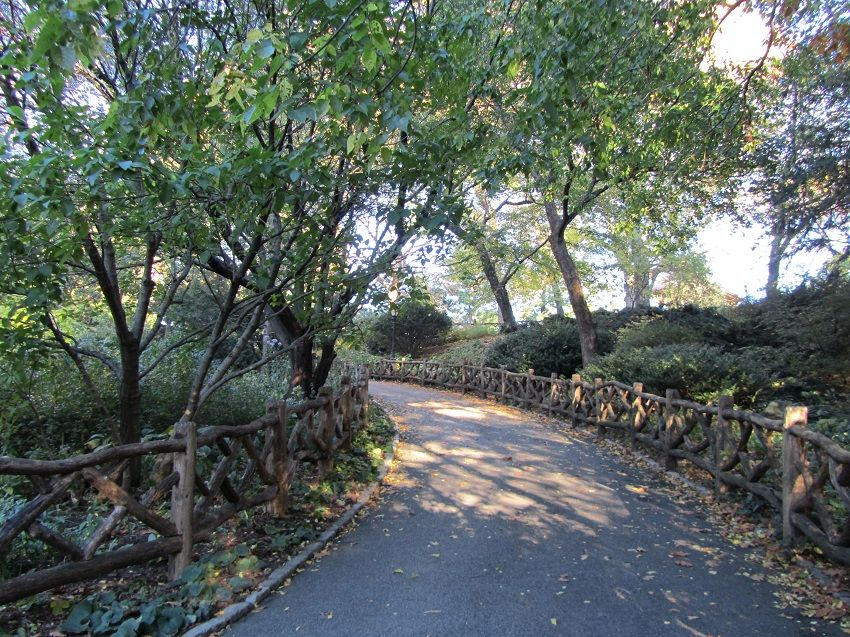 the-ramble-centralpark-2